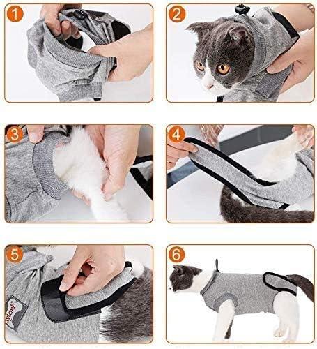 Cystyle Haustier Verkl/ärung Kost/üm Hund Katze tragen K/ürbis Kleidung mit L/ächeln Gesicht