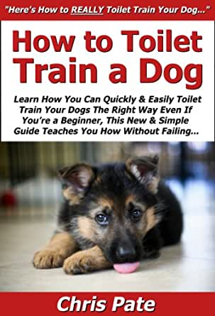 How to Toilet Train a Dog: Learn How You Can Quickly ...