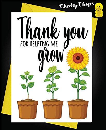 """K6 Bigliettino di Ringraziamento per Insegnanti e Maestri con Scritta /""""Thank You For Helping Me Grow/"""""""