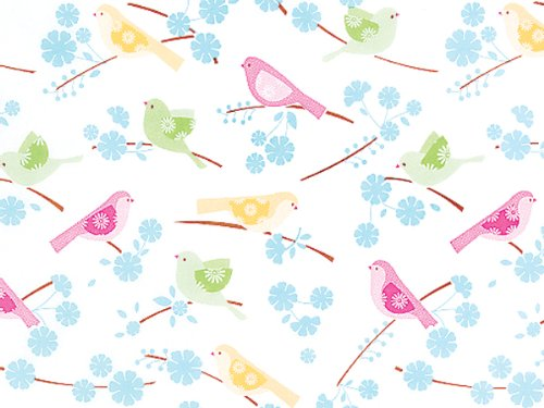 Song Birds Tissue Paper 200~20''x30'' Sheets Tissue Prints (200 Sheets) - WRAPS-P320 by Miller Supply Inc