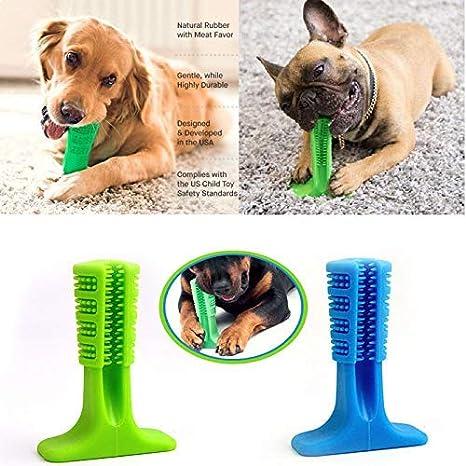 NiLeFo - Cepillo de Dientes y Puzzle para Perro, no tóxico ...