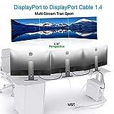 8K DisplayPort to DisplayPort 1.4 Cable, Display