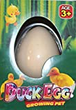 Duck Egg Magic Hatching Egg Growing Pet