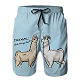 BBggyh Men Llamas with Hats Breathable Boys Beach Shorts Surfing Pants