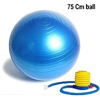 FASTUNBOX (LABEL) 75Cm Yoga Ball Anti-Explosion Pregnant Slimming Balance Gym Palla Fitness Ballon Fitball Exercise Bosu Swiss Pilates Sports Ball