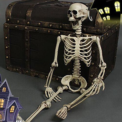 1Pcs Realistic Man Bone Skeleton Halloween Scary Skull Creepy Prop Decorations (Halloween Broomstick Treat Bags)