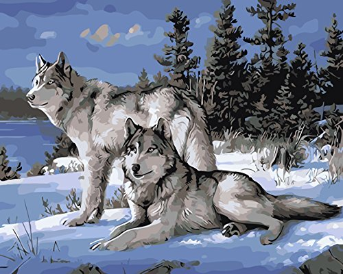 """Iii Framed Canvas (iCoostor Paint By Numbers DIY Acrylic Painting Kit For Kids & Adults By 16"""" x 20"""" Framed Wild Wolf Pattern With 3 Brushes & Bright Colors…)"""