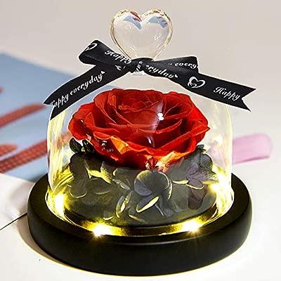 ZLDM Rosa Eterna Bella y Bestia Flor + Luces LED, Natural Rosa Eterna Roja con Base,Regalo De Cumpleaños para Mamá y Papá, Mujer/Regalos para Hombre ...