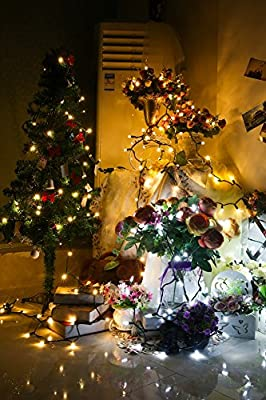 [UL Listed]Outdoor LED String Lights,18 feet 50 LEDs Mood Lighting Strands,Diamond Strawberry C3 Bulbs, Christmas Lights,for Patio Garden Holiday Wedding Decor--MAXINDA