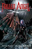 img - for Fallen Angel Reborn book / textbook / text book