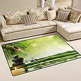 WellLee Area Rug,Spa Stones Garden Flow Water Floor Rug Non-slip Doormat for Living Dining Dorm Room Bedroom Decor 60x39 Inch
