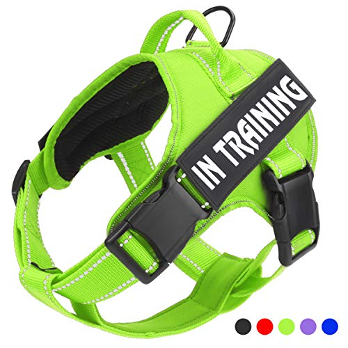 (No Pull Dog Harness with Reflective Straps Adjustable Service Dogs Vest with Nylon Handle Easy Walker in Training Pet Halters with Hook Oxford Fabric for Small Medium Large Dogs(Green))