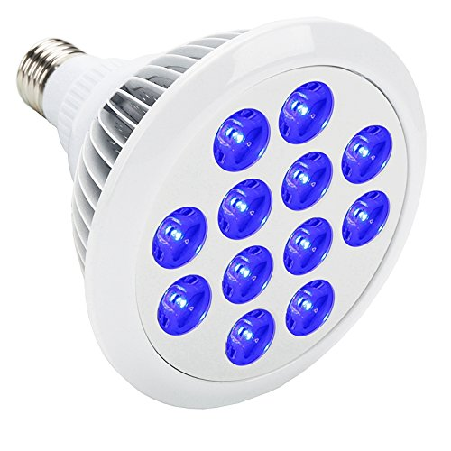 Best Led Grow Lights For Vegetative Growth - 1