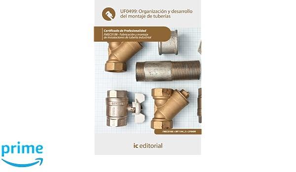 Organización y desarrollo del montaje de tuberías. fmec0108 - fabricación y montaje de instalaciones de tubería industrial: Amazon.es: Carmen Lago Lago: ...