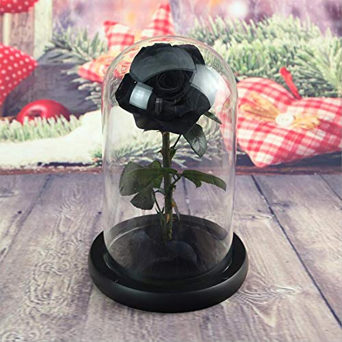 (Real Rose 8.6''H Beauty and The Beast Enchanted Rose, Preserved Fresh Rose in Glass Dome Romantic Forever Gift for Her Anniversary Valentine's Day Christmas Mothers Day - Black, 8.6''H)