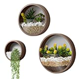 3 Pack Set Wall Planters Modern Wall Vase Succulent Planter Circle Round Flowe Pot Metal Iron Indoor Vertical Container Wall Hanging Home Decoration Size S,M,L Coffee