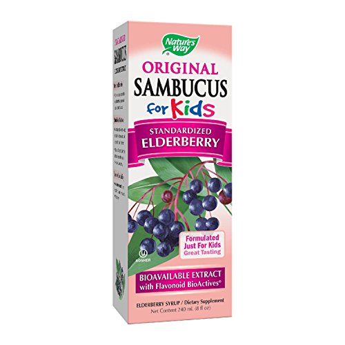 Nature's Way Sambucus Elderberry Syrup for Kids, Herbal Supplements, Gluten Free, Vegetarian, 8 Ounce - Natures Way Herbal Formulas