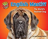 English Mastiff, Dawn Bluemel Oldfield, 1617727288