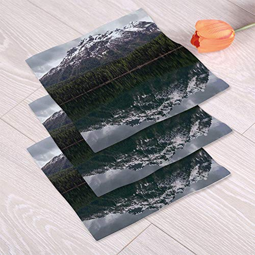 C COABALLA Landscape Lightweight Towels,Lake St. Moritz in Switzerland for Bathing Spa Center,One Sided Printing:Hand Towel Set of 3 (Best Spa In St Moritz)