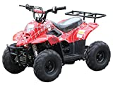 kids atv - 110cc ATV Four Wheelers Fully Automatic 4 Stroke Engine 6 Inch Tires Quads for Kids Spider Burgundy