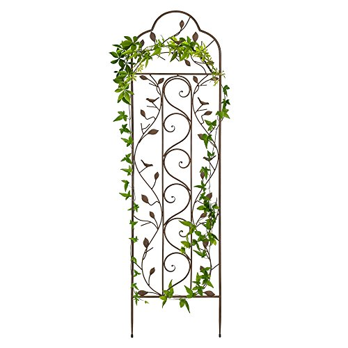 Best Choice Products 60x15in Iron Arched Garden Trellis Fence Panel w/Branches, Birds for Lawn, Garden, Backyard, Climbing Plants - Bronze