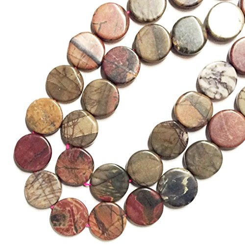 Imagine If...Beads Gorgeous Natural Gemstone Various Shapes-Oval. Tube, Nugget, Coin, Rectangle, Twist, Diamond, Bicone, Marquise, Barrel, Rice, Loose Beads Bag for Jewelry Making (Disc, Rainbow Jasper)