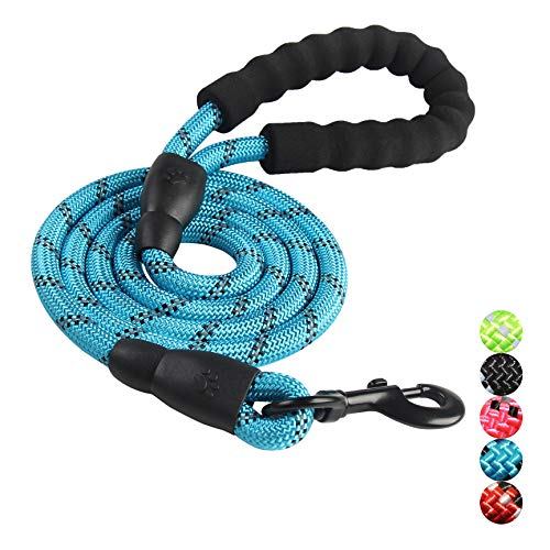 Trasen Pet Reflective Strong Dog Leash 5ft Long with Comfortable Padded Handle, Heavy Duty Training Durable Nylon Rope Leashes for Small Medium Large Dogs (Blue)