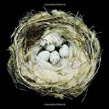 img - for Nests: Fifty Nests and the Birds that Built Them book / textbook / text book
