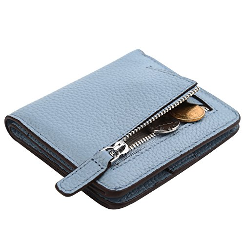 Dante Women's RFID Blocking Small Compact Bifold Leather Pocket Wallet Ladies Mini Purse with(Pebble Light Blue)