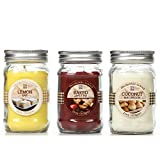 Hosley's Set of 3 Jar Candles: Baked Apple Pie, Coconut Macaroon, Lemon Bar. 11oz Each. Ideal votive GIFT for party favor, weddings, Spa, Reiki, Meditation, Bathroom settings O3