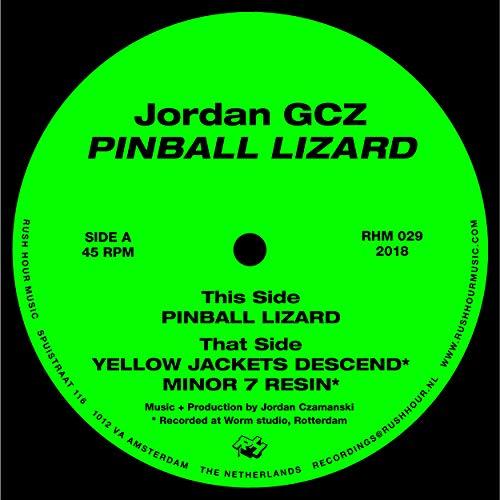 Pinball Lizard - Jordan Lizards