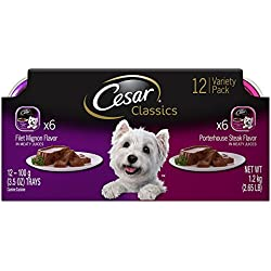 CESAR Canine Cuisine Variety Pack Filet Mignon & Porterhouse Steak Dog Food (Two 12-Count Cases)