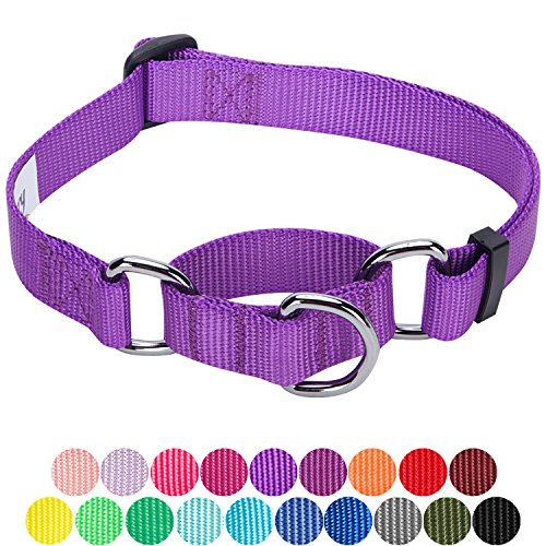Blueberry Pet 19 Colors Safety Training Martingale Dog Collar, Dark Orchid, Medium, Heavy Duty Nylon Adjustable Collars for Dogs