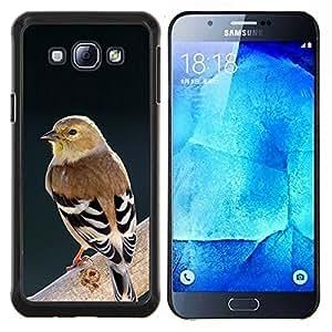 LECELL--Funda protectora / Cubierta / Piel For Samsung Galaxy A8 A8000 -- ornitología rama de la primavera de aves --