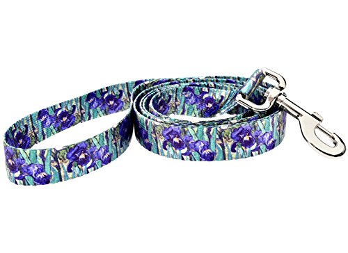 DoggyRide Fashion Dog Leash, 5-Feet, Van Gogh Irises, Green/Purple