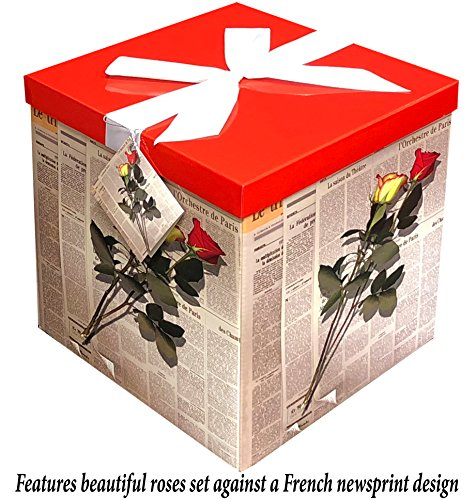 Gift Box 10''X10''X10'' - Les Roses Collection - Easy to Assemble & Reusable - No Glue Required - Ribbon, Tissue Paper, and Gift Tag Included - EZ Gift Box by Endless Art US by Endless Art US
