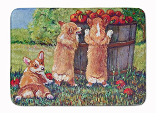 top 5 best kitchen rugs non skid apple,sale 2017,Top 5 Best kitchen rugs non skid apple for sale 2017,