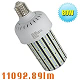 Caree-LED 80W LED Area Lamp Retrofit 320Watt HID/Metal Halide,347 Volt 480 Volt Daylight White 5000K Retrofit Corn Cob for Farm Barn,Storage Room E39 Large Mogul Screw Base
