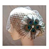 S&E Women's Elegant Peacock Feather Bridal Wedding Birdcage Face Veil Hair Accessory