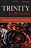 Trinity in Relation: Creation, Incarnation, and Grace in an Evolving Cosmos