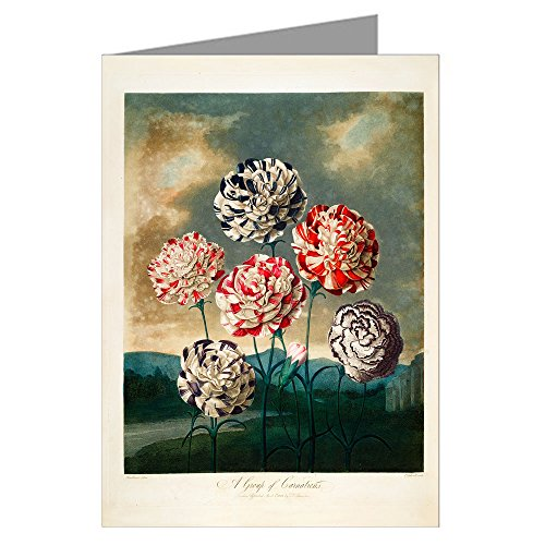 Blue Earth Dragon - 6 Assorted Greeting Cards of Robert Thornton's Medical Illustration's of Blue Water Lilly, carnations, cyclamen, dragon, Indian Reed, Mimosa Flower from His - Temple of Flora.