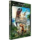 Sur la terre des dinosaures : Le Film - Blu-ray 3D + Blu-Ray + DVD + Copie digitale ULTRAVIOLET - Edition limitée avec fourreau lenticulaire