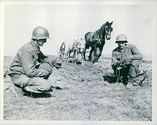 Vintage photo of Signal Corps soldiers of the U.S. Army repair wires in a field being furloughed by a French farmer. ()