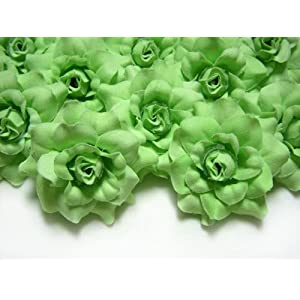 "(24) Silk Light Green Roses Flower Head - 1.75"" - Artificial Flowers Heads Fabric Floral Supplies Wholesale Lot for Wedding Flowers Accessories Make Bridal Hair Clips Headbands Dress 111"