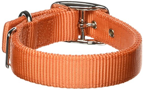 Hamilton Double Thick Nylon Deluxe Dog Collar, 1-Inch by 18-Inch, Mango Orange