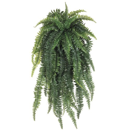 Allstate Floral Weeping Boston Fern Hanging Bush, 52-Inch, Light Green