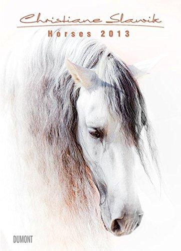 horses-2013