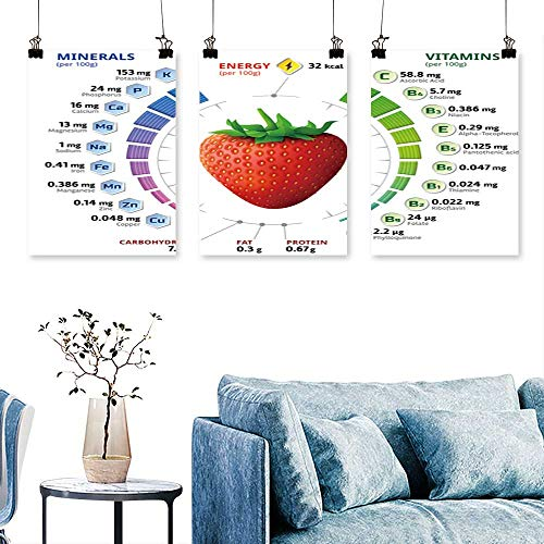 SCOCICI1588 Three Consecutive Painting Frameless Vitamins Mineral Garden Strawberry infographics About nutrients for Home Modern Decoration No Frame 12 INCH X 16 INCH X 3PCS