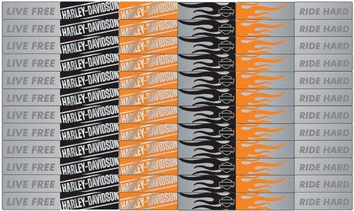 Harley-Davidson Motorcycle Fastenater Decorative Staple Bars (EKFSVP49)
