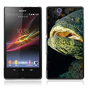Carcasa Funda Case //Grouper Fish V0000273// Sony Xperia Z L36H L36I